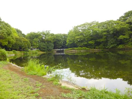 f:id:sakuramiyuki:20190906112947j:plain