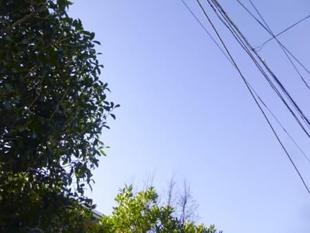 f:id:sakuramiyuki:20200218190900j:plain
