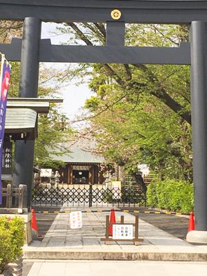 f:id:sakuramiyuki:20200417200411j:plain