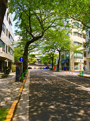 f:id:sakuramiyuki:20200501152723j:plain