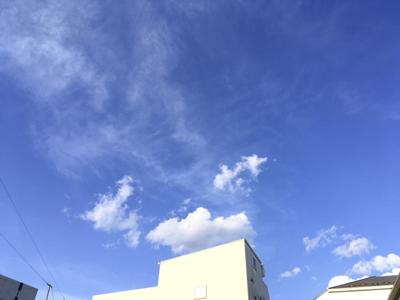 f:id:sakuramiyuki:20200508224223j:plain