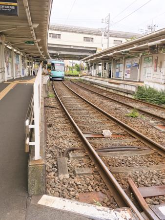 f:id:sakuramiyuki:20200721204412j:plain