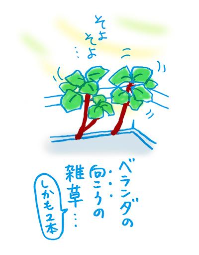 f:id:sakuramiyuki:20200804122306j:plain