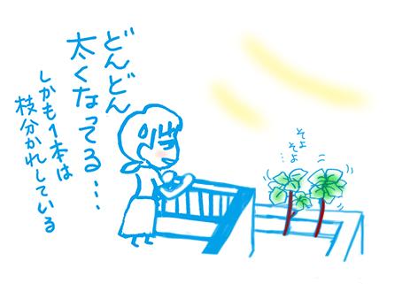 f:id:sakuramiyuki:20200804122358j:plain