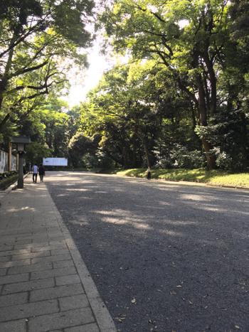 f:id:sakuramiyuki:20200911195719j:plain