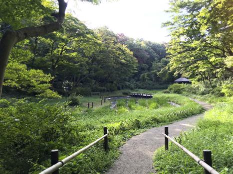 f:id:sakuramiyuki:20200911195810j:plain