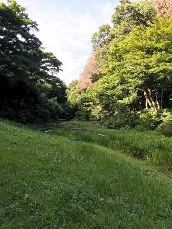 f:id:sakuramiyuki:20200911195814j:plain