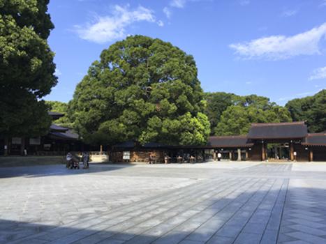 f:id:sakuramiyuki:20200911223527j:plain