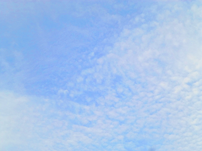 f:id:sakuramiyuki:20201030214742j:plain