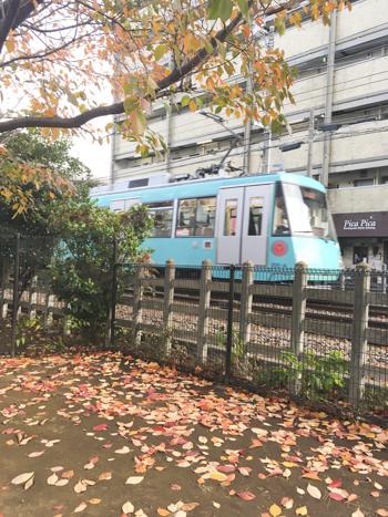 f:id:sakuramiyuki:20201222111757j:plain