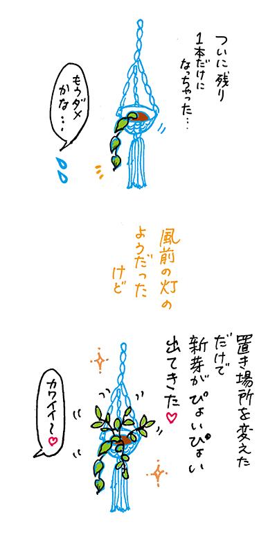 f:id:sakuramiyuki:20201231232057j:plain