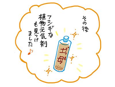 f:id:sakuramiyuki:20201231232125j:plain