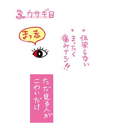 f:id:sakuramiyuki:20210102193256j:plain
