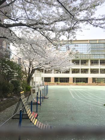 f:id:sakuramiyuki:20210330211457j:plain