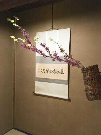 f:id:sakuramiyuki:20210406205032j:plain