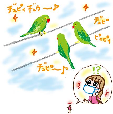f:id:sakuramiyuki:20210610210718j:plain