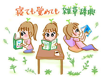 f:id:sakuramiyuki:20210617172055j:plain