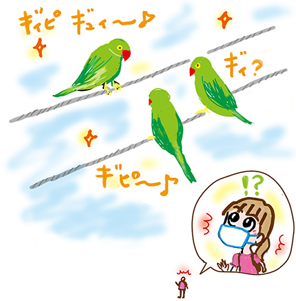 f:id:sakuramiyuki:20210629215427j:plain