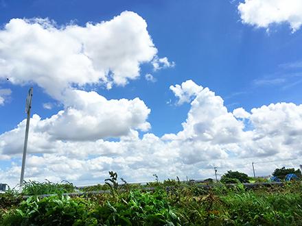 f:id:sakuramiyuki:20210804195927j:plain