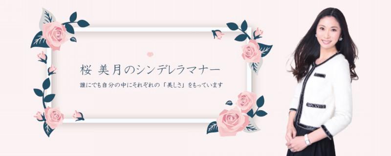 f:id:sakuramizukishiawasebijin:20181129185133j:plain