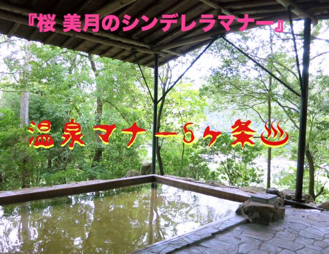 f:id:sakuramizukishiawasebijin:20190814192819j:plain