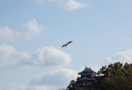 岡山カルチャーゾーンまちづくりの会の画像