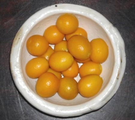 晩生の金柑の画像
