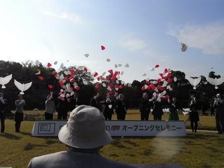 吉備雅楽 岡山芸術回廊オプニングセレモニーの画像
