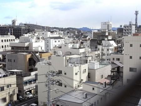 岡山市内 エキゾチックな白の映える光景の画像