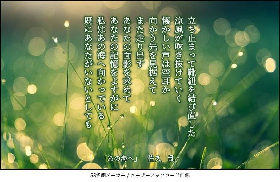 f:id:sakuran_blog:20200107084907j:plain