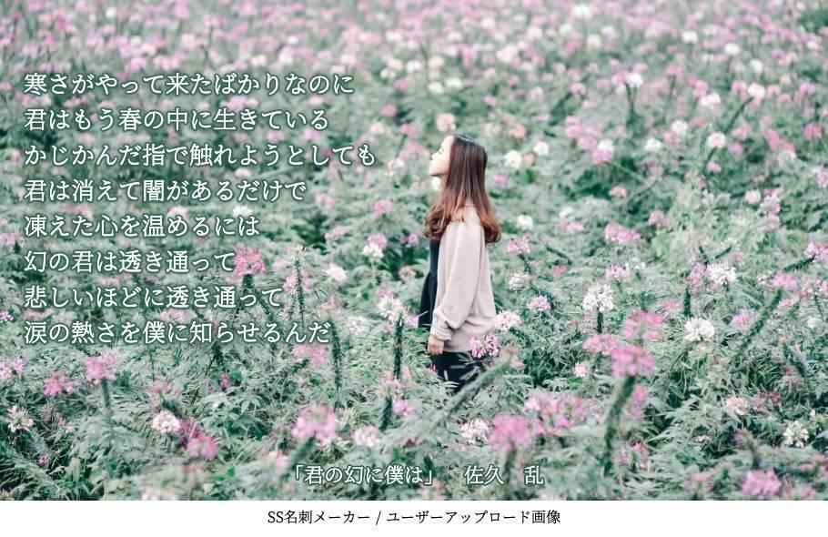 f:id:sakuran_blog:20200131234249j:plain