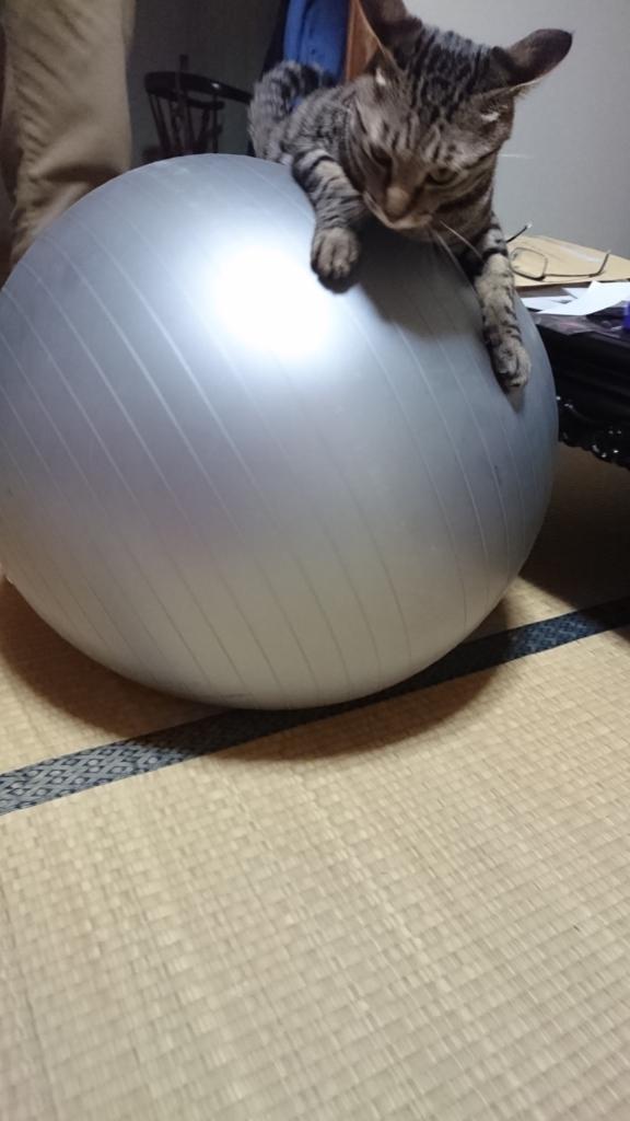 f:id:sakuranomikoto:20170722201423j:plain