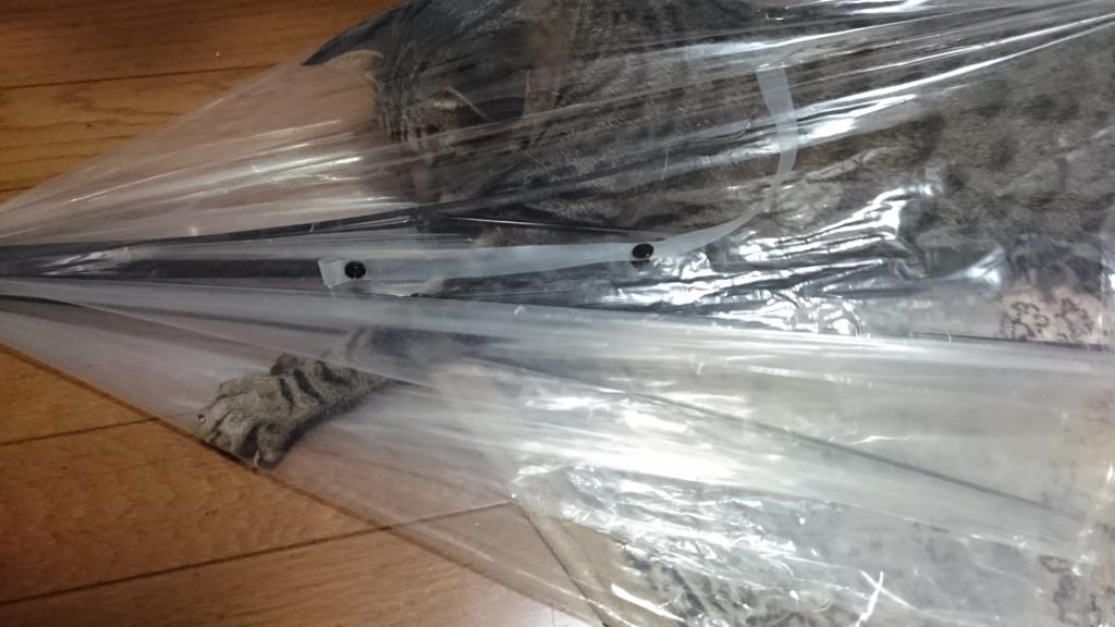 f:id:sakuranomikoto:20170913204150j:plain