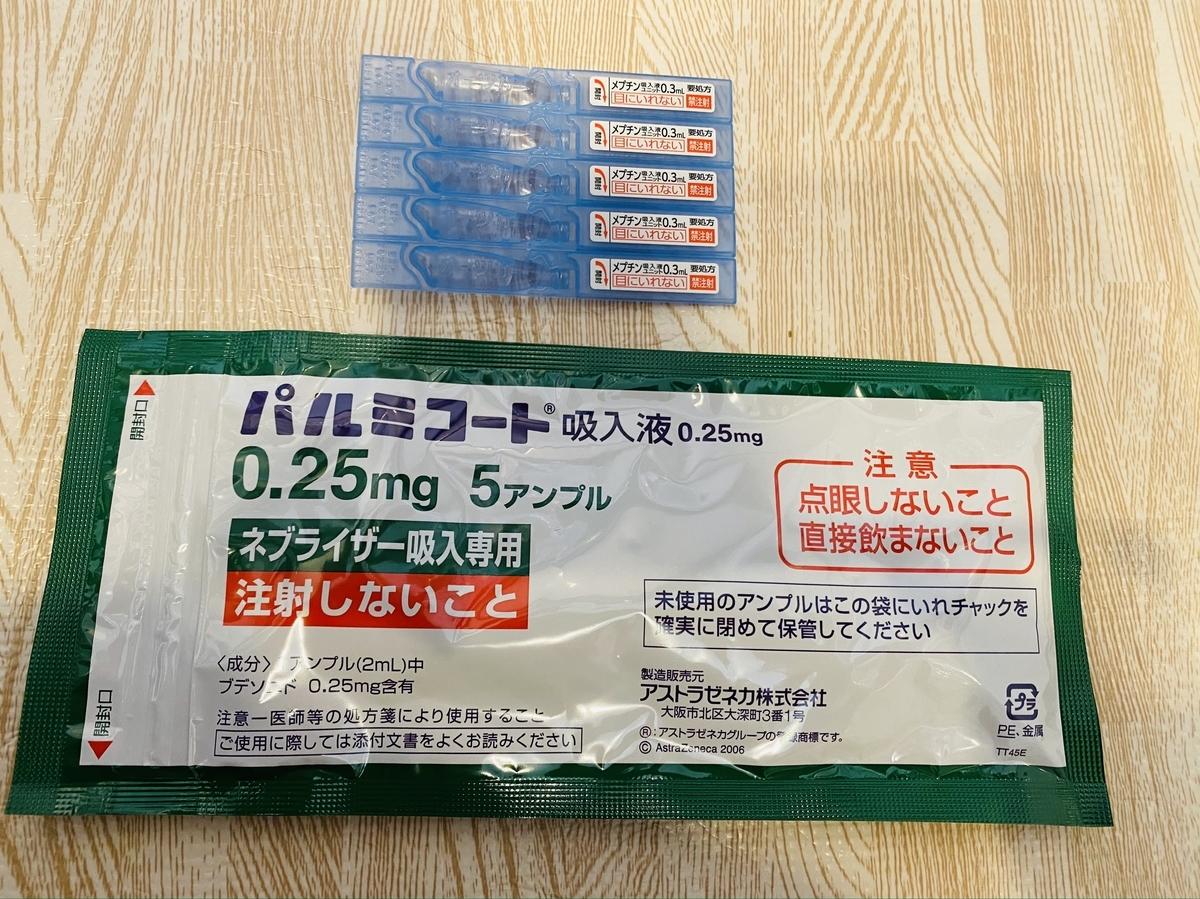 f:id:sakuras_letter:20210121110704j:plain
