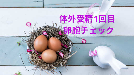 f:id:sakurasaku1111:20190627205606p:image