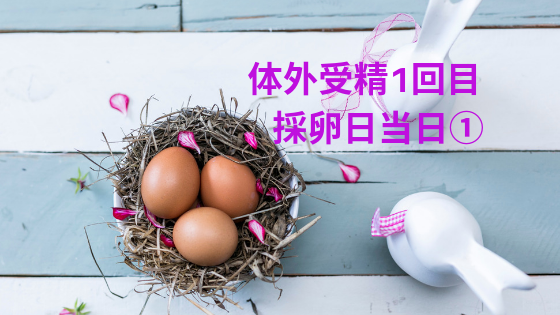 f:id:sakurasaku1111:20190627205825p:image