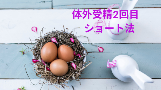 f:id:sakurasaku1111:20190710162216p:image