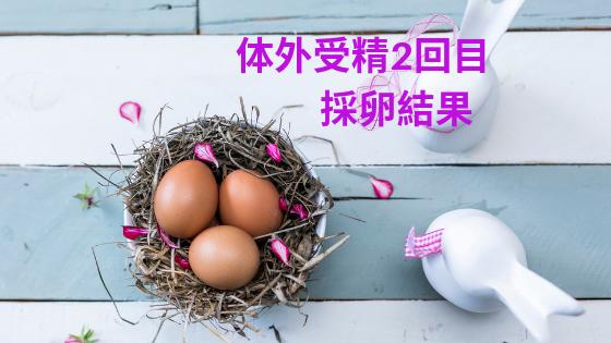 f:id:sakurasaku1111:20190712133703p:image