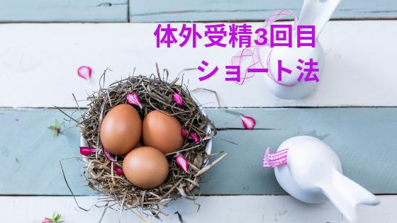 f:id:sakurasaku1111:20190717164838p:image