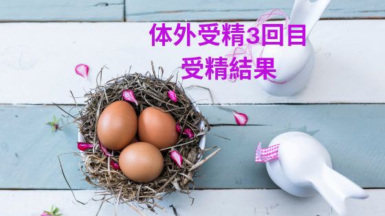 f:id:sakurasaku1111:20190719170013p:image