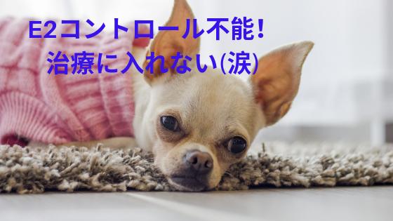 f:id:sakurasaku1111:20190728174431p:image