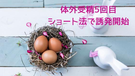 f:id:sakurasaku1111:20190728211105p:image