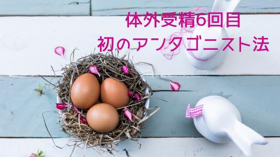 f:id:sakurasaku1111:20190804205835p:image