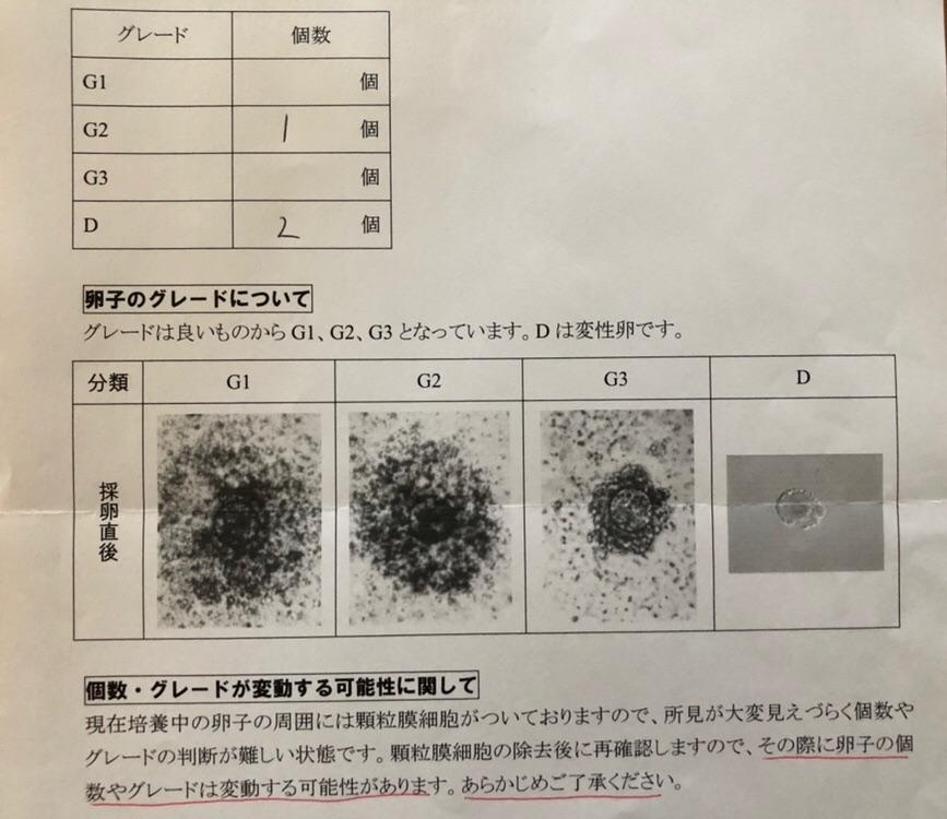 f:id:sakurasaku1111:20190807103941j:image