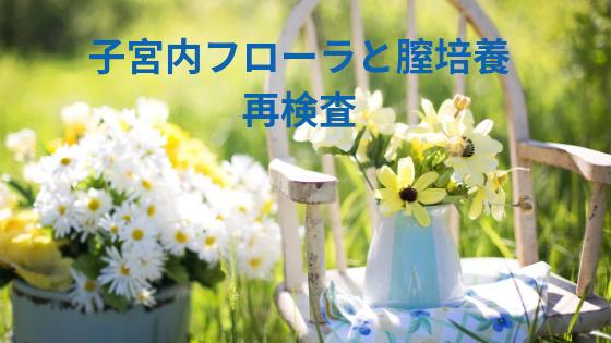 f:id:sakurasaku1111:20190808111857p:image