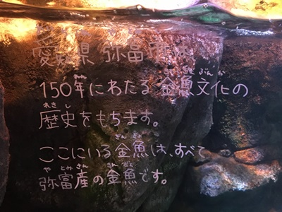 f:id:sakurasaku555:20180919135216j:plain