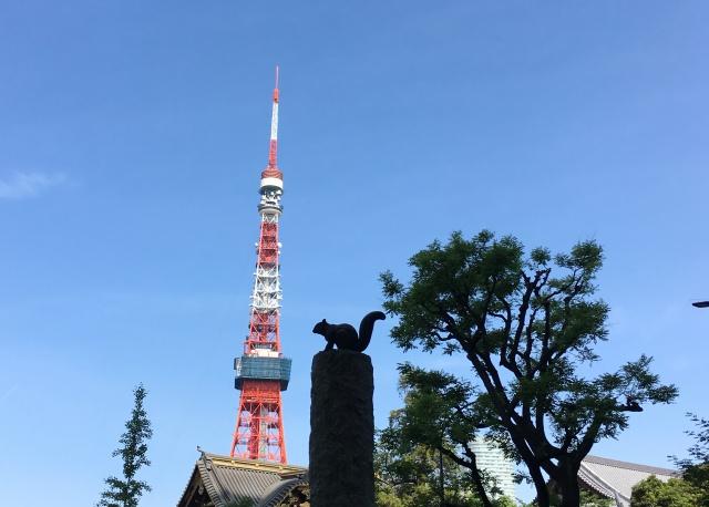 リスと東京タワー