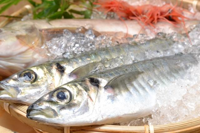 魚嫌い克服チャレンジ