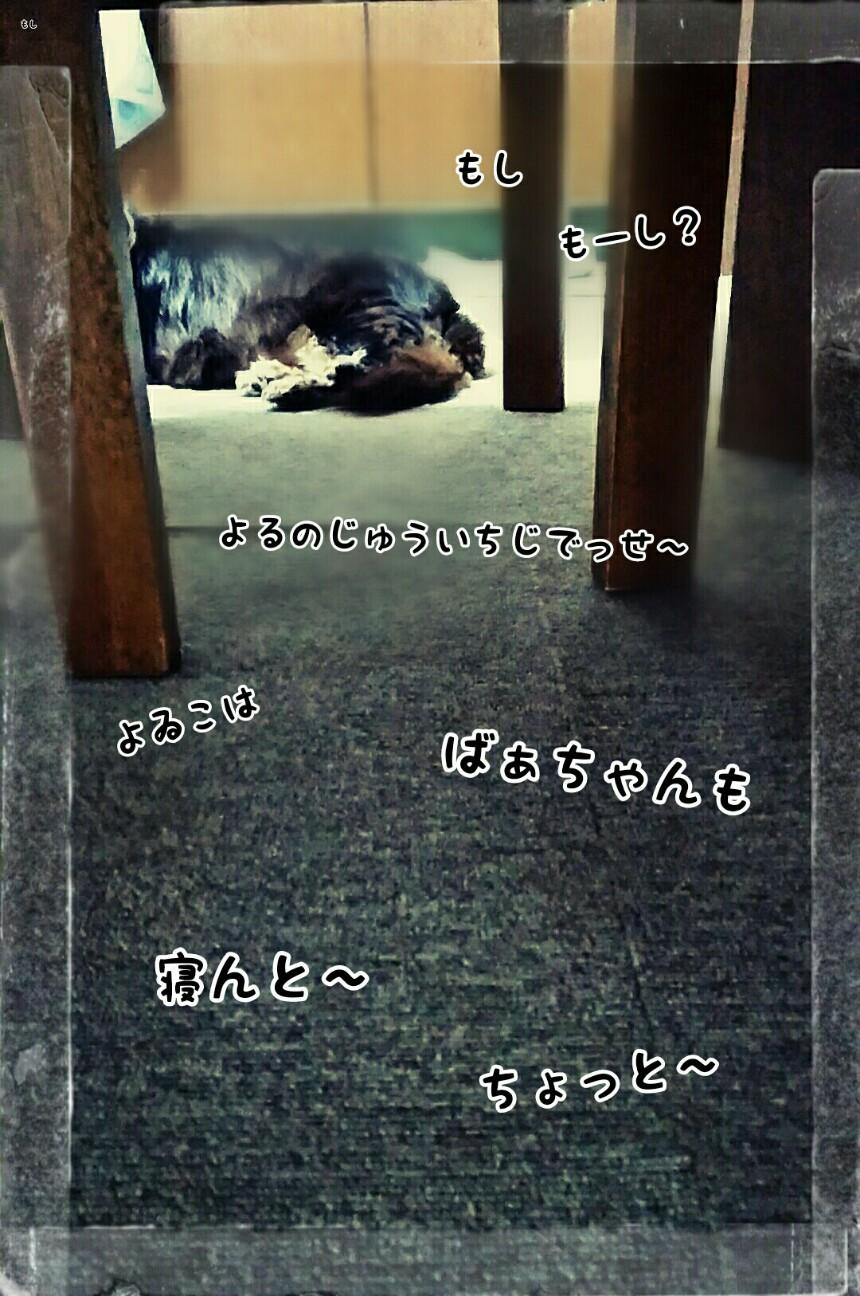 f:id:sakuratansokuclub1996:20180803001908j:image