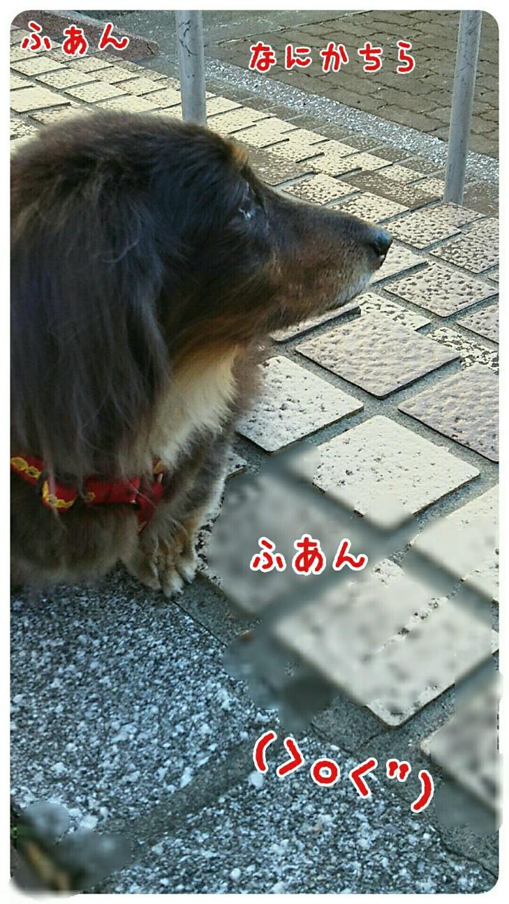f:id:sakuratansokuclub1996:20180826094445j:image
